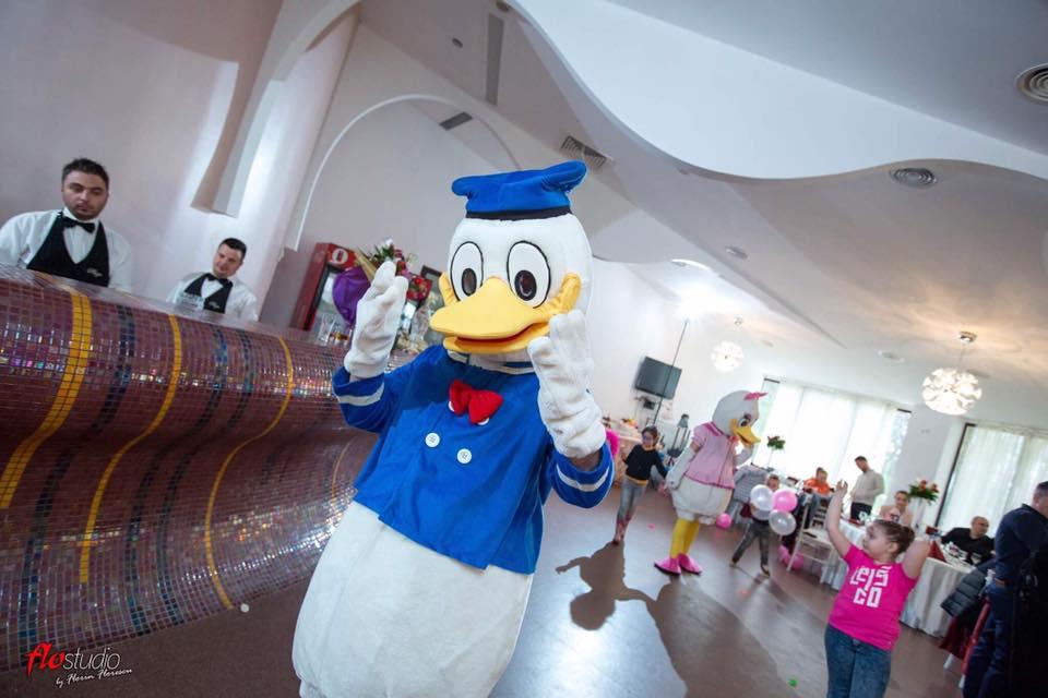 Petreceri copii Donald Duck Craiova